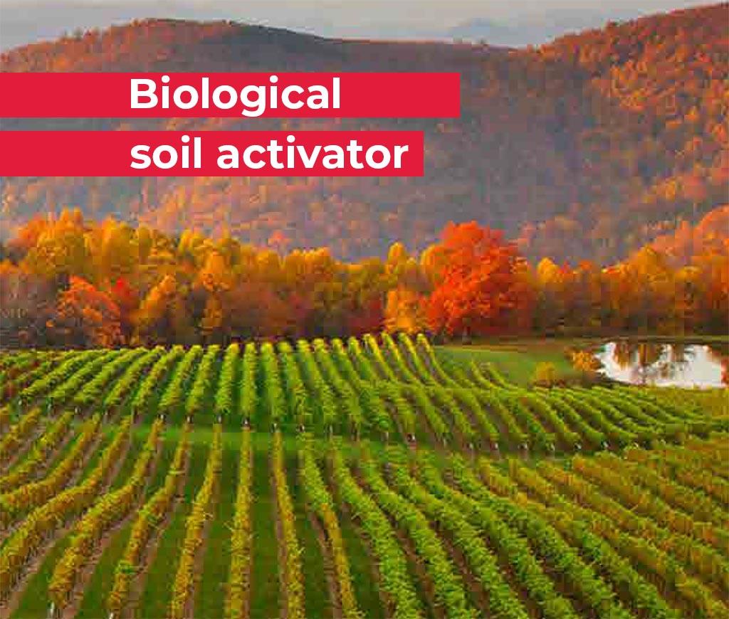 ficosagro-ficosterra.com-Bioestimulante-biofertilizante-bokashi-ficosterra-medio-ambiente-jardineria-cesped-deportivo-cesped-golf-abono-organico