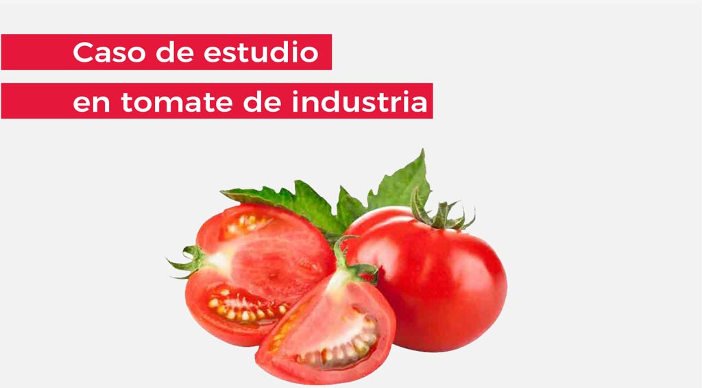 17-100_web_2019 productos_DEF