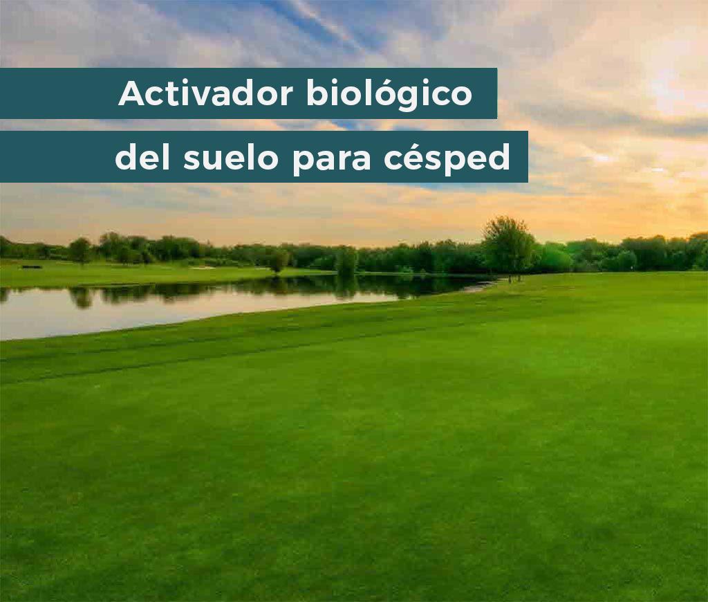 ficosterra-productos-2_0000_Capa-5-1_0002_activador-biologico-de-suelo-para-cesped-1024x870