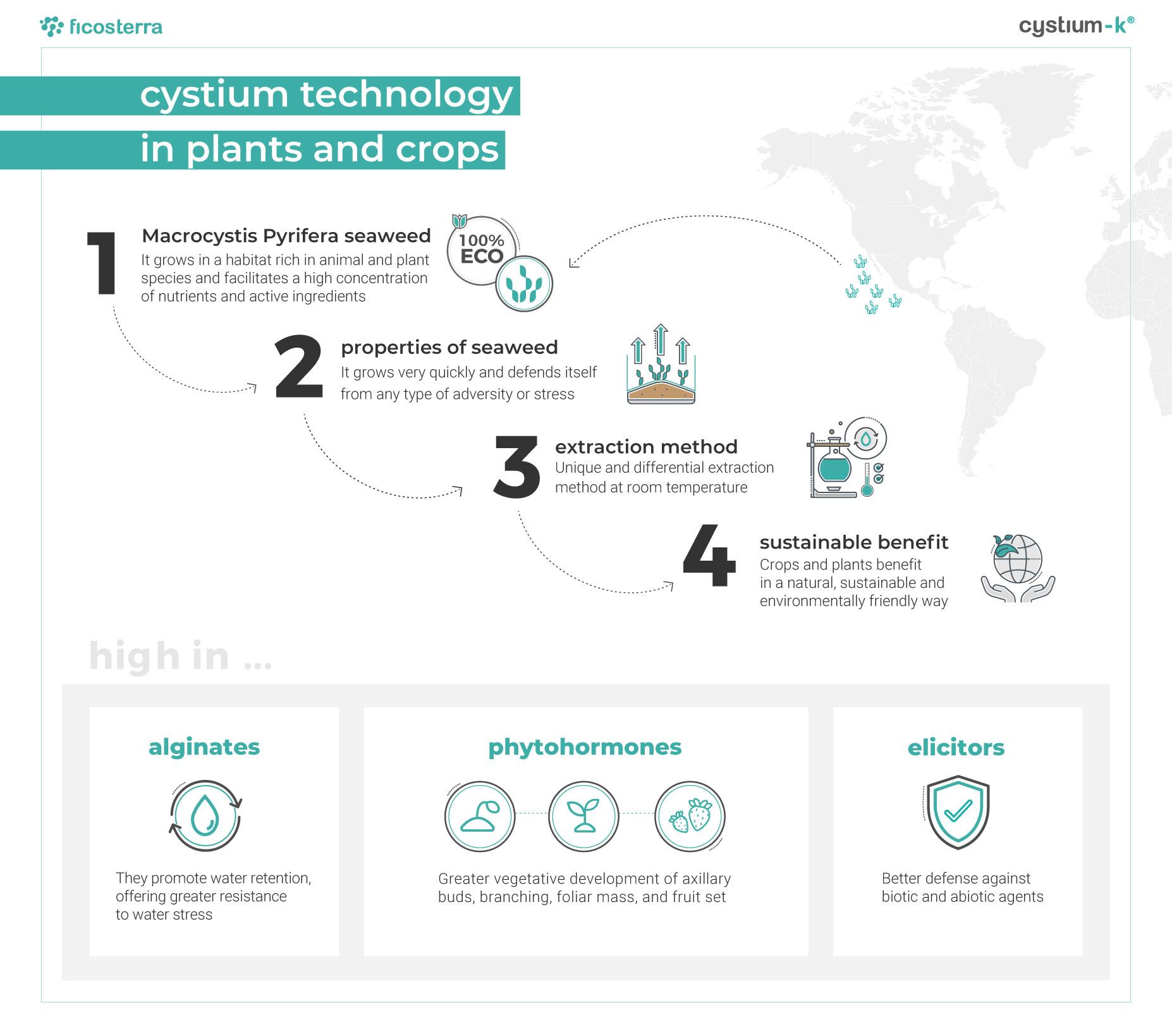 2021_03-infografiěa-Cystium_20210304-EN_ficosterra